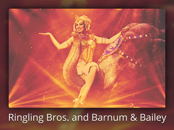 ringling-bros-barnum-and-bailey-email-featured-600x450